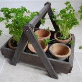 HERB PLANTER INC 6 POTS